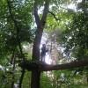 09-07-25_kletterpark_16
